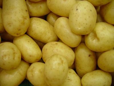 Pomme de terre GRENAILLES 1kg